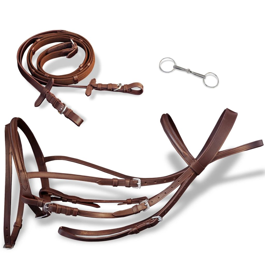Leather Flash Bridle with Reins and Bit Brown Cob